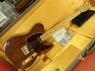 fender telecaster rarity red mahogany  top