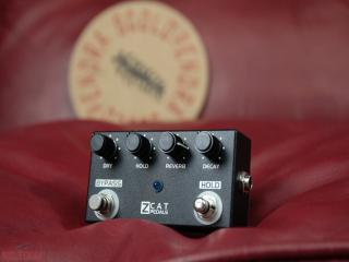 zcat reverb hold on